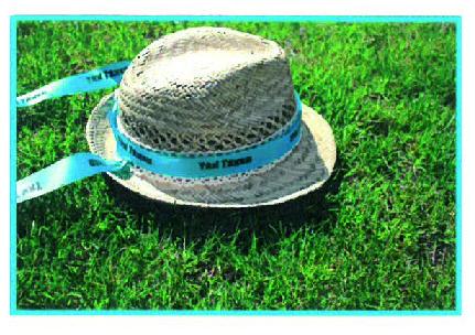 Nouveau : le ruban à chapeau imprimé